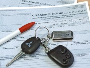 Сведения, которые вносятся в страховой полис